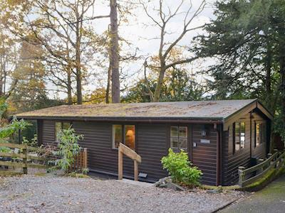 Woodland holiday home | Wastwater, Loughrigg, near Ambleside