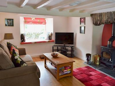 Cosy living room with wood burner | Woodside Cottage, Low Stott Park, near Newby Bridge